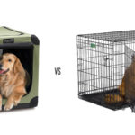 Soft Dog Crates vs Metal
