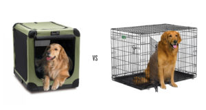 Soft Dog Crate vs Metal Crate