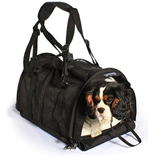 soft sided pet carrier airline approved